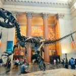 American Museum of Natural History – Make a Plan Visit