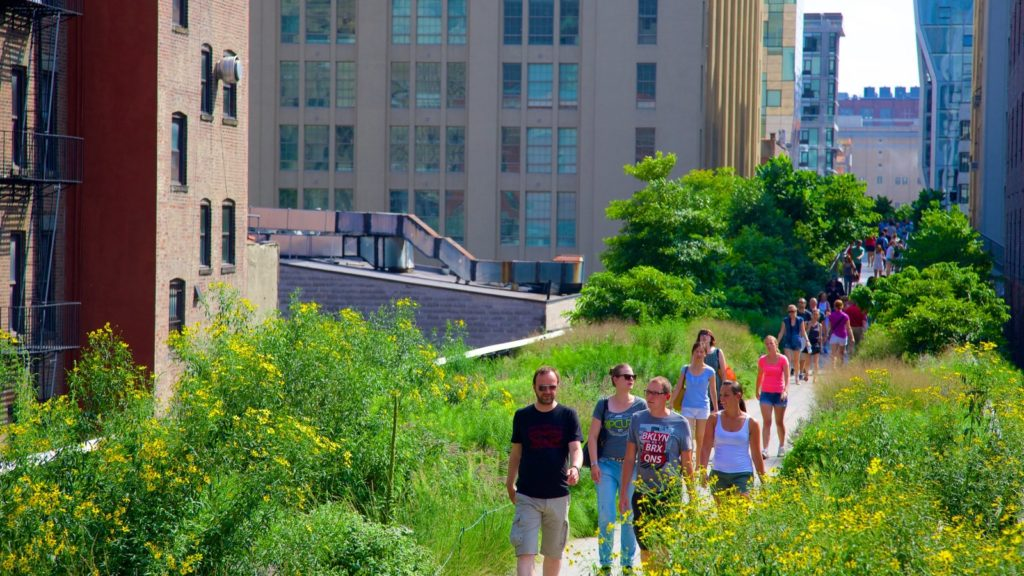 Major attractions to visit at the High Line
