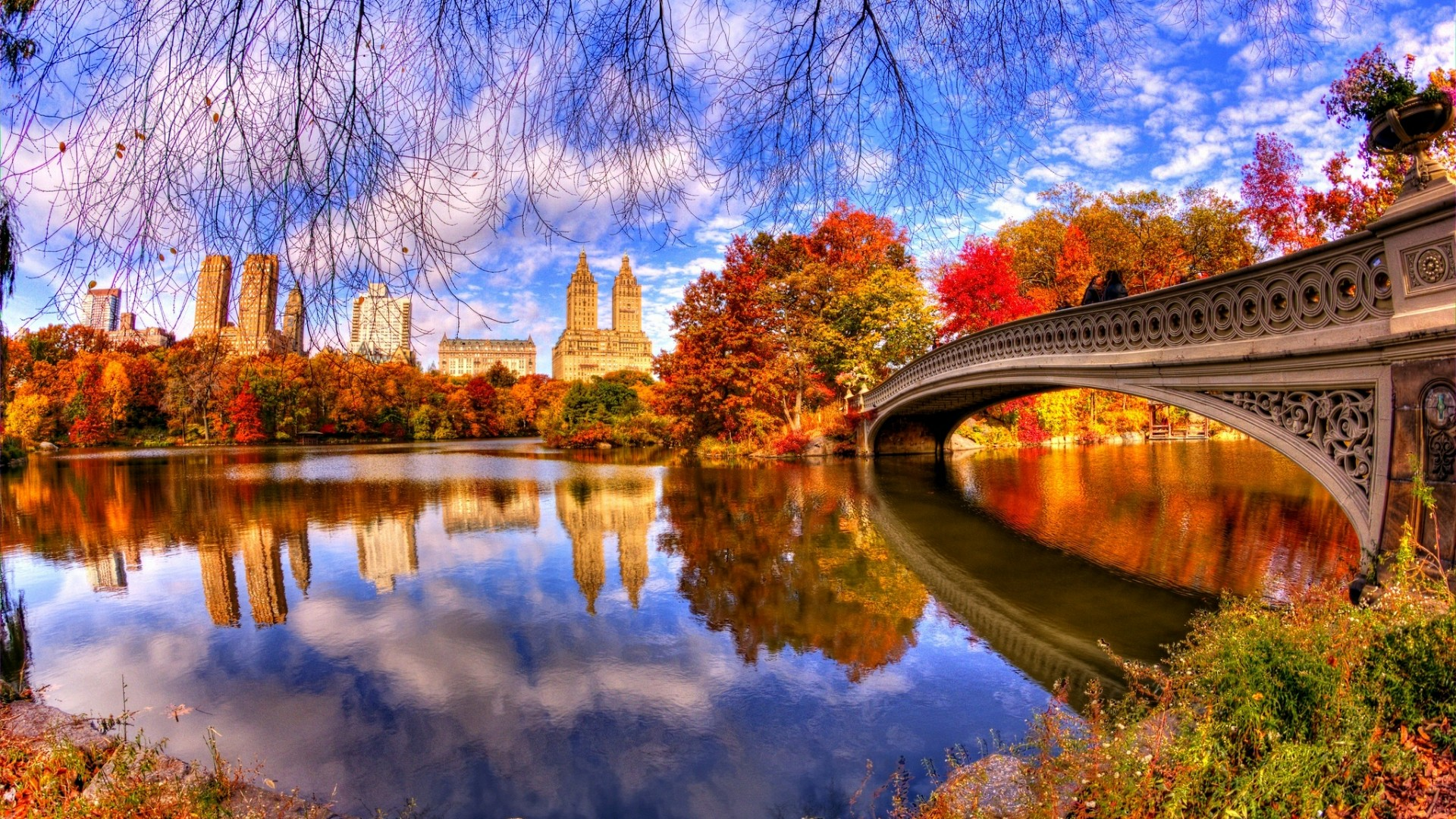 Best Things to do in Central Park New York City